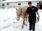 Младежи помагат в лечебната конна езда на деца с увреждания в Банско